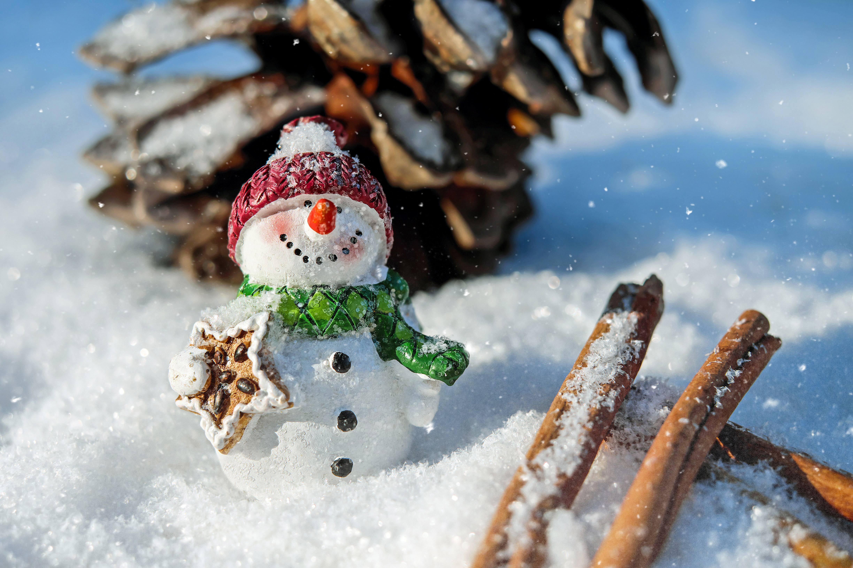 snow-man-1882635